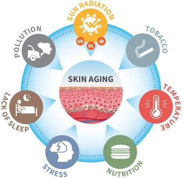Các yếu tố môi trường ảnh hưởng đến lão hóa da